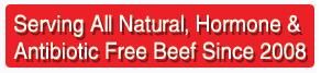 hormone and antibiotic free burgers
